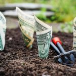 Kuinka saavuttaa taloudellinen vapaus
